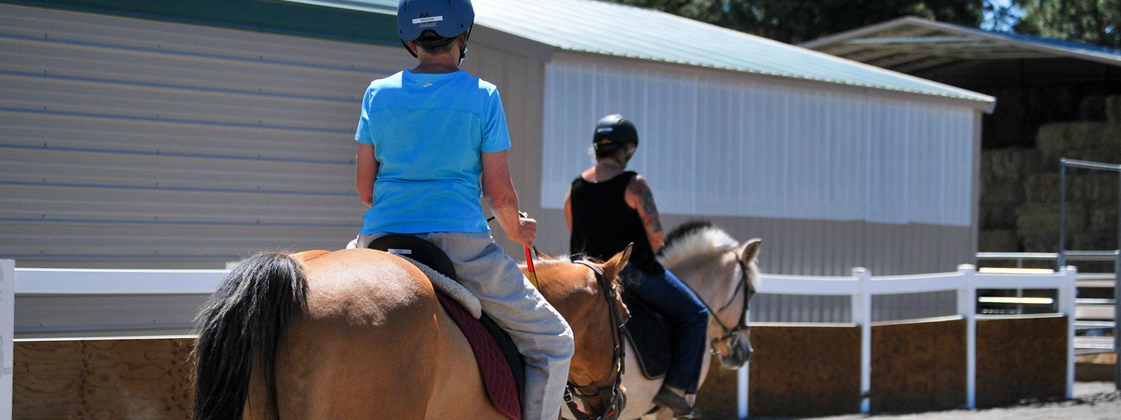 the backs of two riders on horses - horsemanship